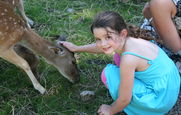 Miriam petting deer in Kristiansand Zoo, summer 2008